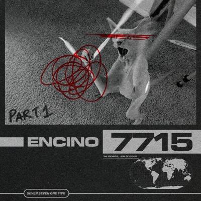 7715 - 2 Much