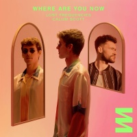 Lost Frequencies - Where Are You Now
